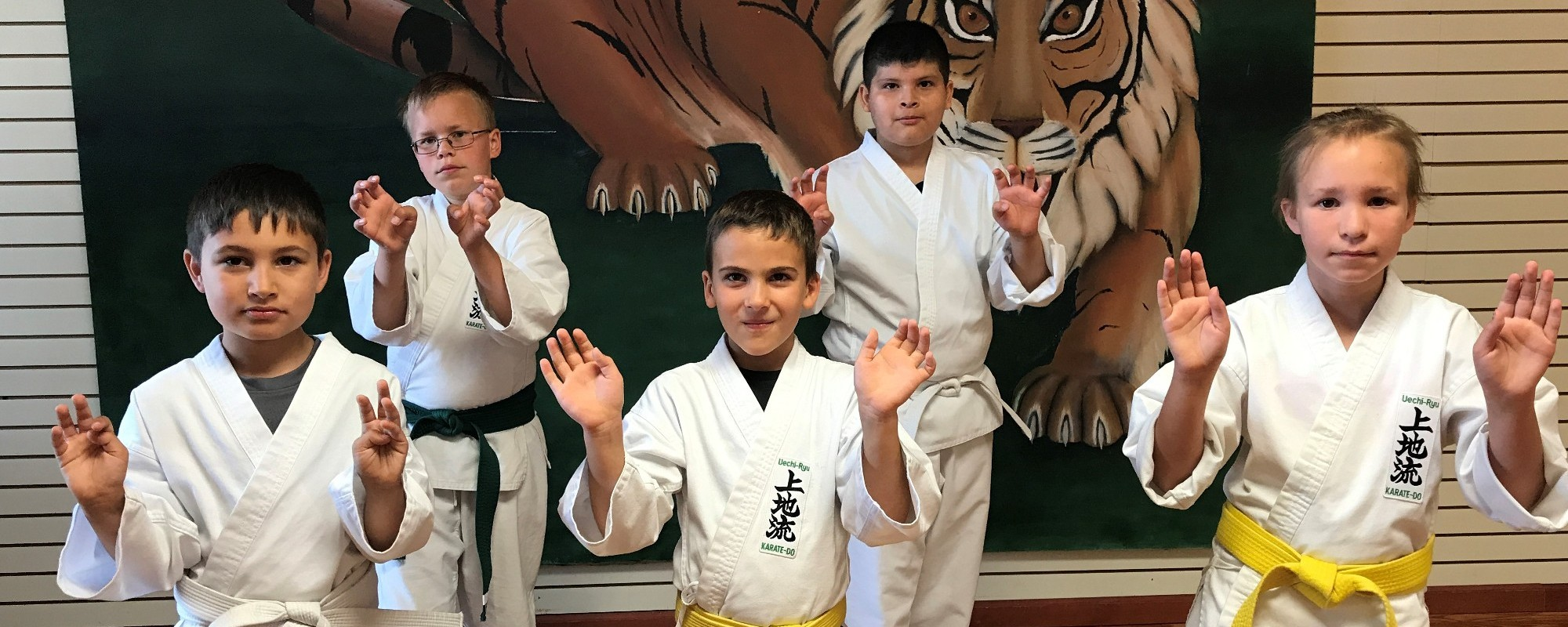 We teach Okinawan karate exercises in Kalamazoo, MI, to children and adults